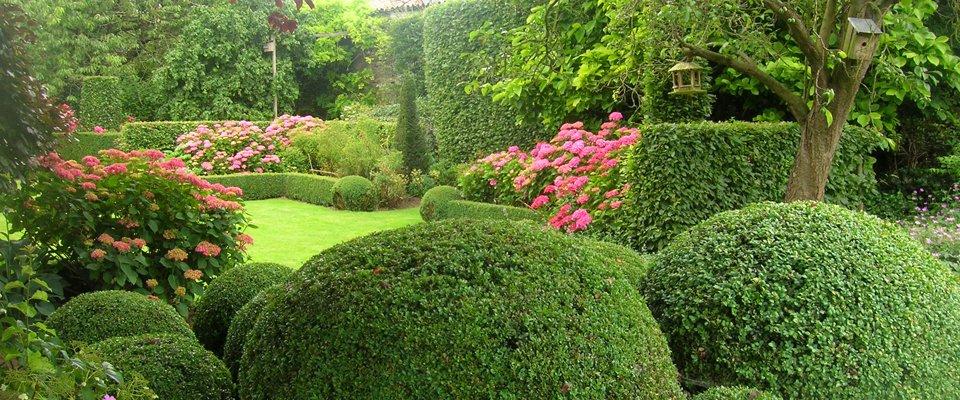 Rey and co paysagiste for Realisation paysagiste jardin